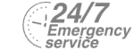 24/7 Emergency Service Pest Control in South Croydon, Sanderstead, Selsdon, CR2. Call Now! 020 8166 9746